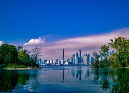 Enjoy the beautiful skyline after moving from EU to Toronto