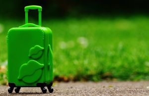 An image of a luggage