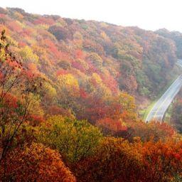 Nature in North Carolina