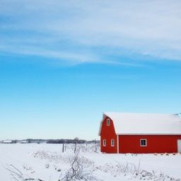 A barn in the winter scenery that makes the idea of moving to the countryside very appealing.