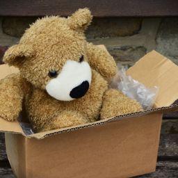 A teddy bear in a cardboard box.