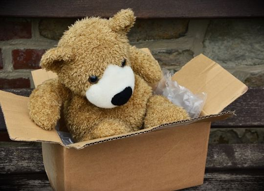 A teddy bear in a cardboard box.